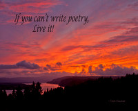 If you can't write poetry